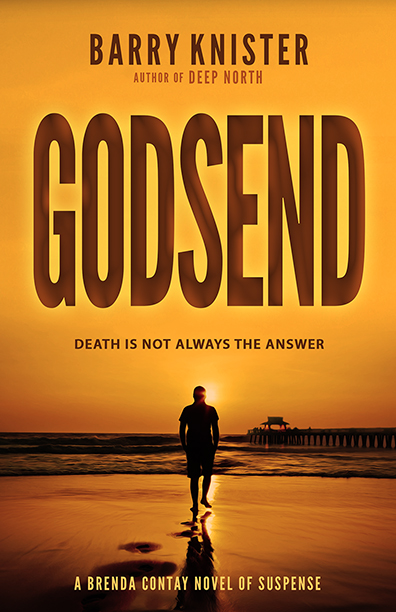Godsend: A Brenda Contay Novel of Suspense by Barru Knister