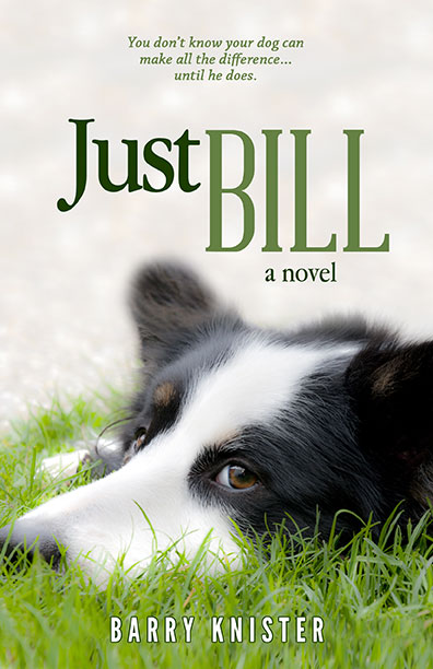 Just Bill by Barry Knister